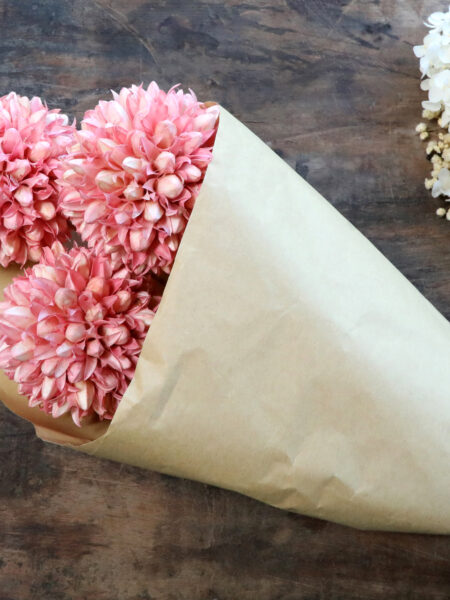 Fleur tørrede Snebold Blomster